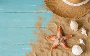 Картинка песок, пляж, лето, отдых, звезда, шляпа, ракушки, summer, beach, sand, starfish, seashells