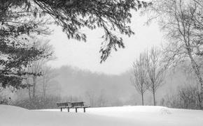 Картинка холод, зима, снег, природа, скамья