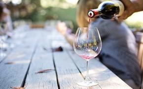 Картинка лето, природа, стол, вино, бокал
