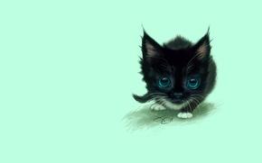 Обои кошка, игра, рисунок, глазки, малыш, арт, котёнок