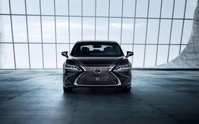 Обои Lexus, седан, вид спереди, 2018, ES 250