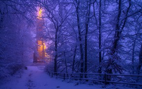 Картинка зима, снег, деревья, Германия, Germany, Trier, Трир, St Mary's Column, Mariensäule, Колонна Святой Марии