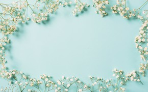Картинка цветы, фон, рамка, white, белые, flowers, spring, frame, floral
