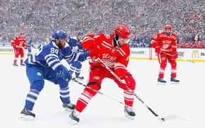 Картинка Игра, Снег, Спорт, Лед, Лёд, Detroit, NHL, НХЛ, Toronto, Хоккей, Национальная хоккейная лига, Red Wings, …
