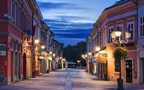 Картинка дорога, небо, облака, деревья, огни, улица, дома, вечер, фонари, Сербия, Novi Sad