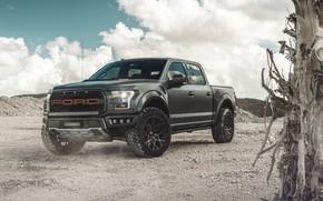 Обои Ford, Raptor, F-150, AG MC, пикап