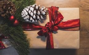 Картинка праздник, подарок, новый год, ель, шишки