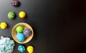 Картинка цветы, яйца, весна, Пасха, flowers, spring, Easter, eggs, decoration, Happy, tender