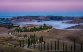 Обои поля, домики, Италия, туман, дорога, деревья, Тоскана, холмы, небо