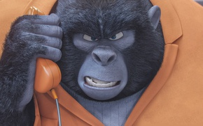 Картинка cinema, movie, animal, gorilla, film, animated film, uniform, seifuku, animated movie, family, jail, Sing