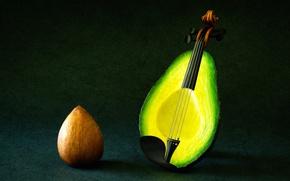 Картинка фантазия, скрипка, струны, авокадо