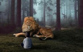Картинка природа, лев, мальчик