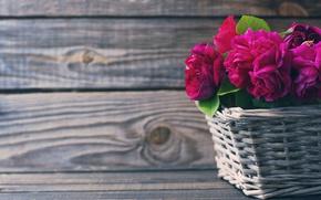 Обои розы, beautiful, корзина, розовые, wood, flowers, pink