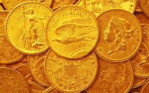 Обои США, доллар, монеты, золото