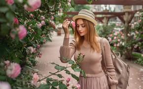 Картинка девушка, цветы, настроение, розы, шляпа, рыжая, рыжеволосая, кусты, Георгий Дьяков, Кристина Кардава