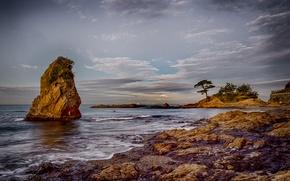 Картинка море, природа, камни, берег