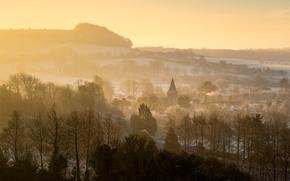 Картинка природа, город, туман, утро