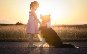 Картинка свет, собака, девочка