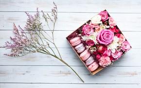 Картинка подарок, розы, Цветы, макаруны, ветка зелени