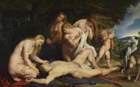 Картинка картина, Питер Пауль Рубенс, мифология, Pieter Paul Rubens, Смерть Адониса