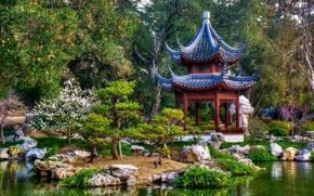 Обои деревья, пруд, парк, Калифорния, беседка, Японский сад, California, San Marino, Сан-Марино