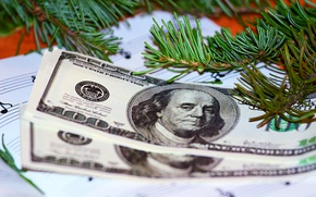 Картинка иголки, новый год, деньги, тетрадь, веточки