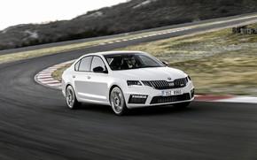 Картинка белый, движение, трасса, седан, Škoda, Skoda, Octavia RS, 2017