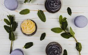 Картинка печенье, десерт, кексы, macaroons, Leaves, cupcakes