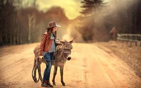 Обои ослик, дорога, девочка