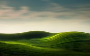 Картинка небо, холмы, поля, ковры
