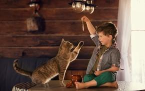 Картинка кошка, кот, рыбка, мальчик