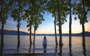 Картинка девушка, деревья, платье, в воде, Lichon, Floodplains