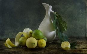 Картинка лимон, ветка, лайм, кувшин, цитрусы