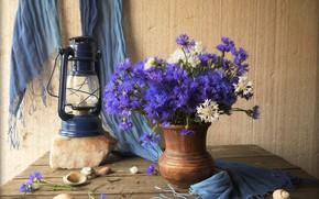 Картинка цветы, лампа, кувшин, wood, васильки