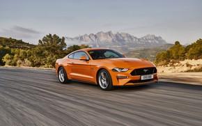 Картинка дорога, оранжевый, движение, Ford, 2018, фастбэк, Mustang GT 5.0