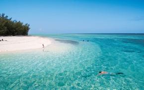 Картинка пляж, вода, прозрачность, океан, белый песок, Heron island
