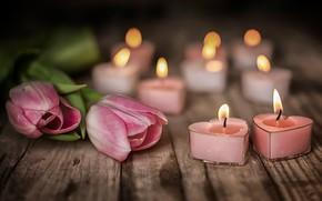 Картинка цветы, настроение, доски, свечи, тюльпаны