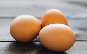 Картинка стол, размытие, Яйца, eggs, table
