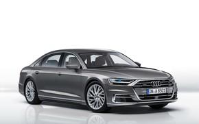 Картинка Audi, ауди, белый фон, седан