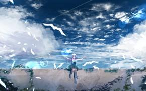 Картинка небо, девушка, птицы