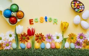 Картинка трава, цветы, ромашки, весна, colorful, Пасха, тюльпаны, хризантемы, flowers, tulips, spring, Easter, eggs, decoration, Happy, …