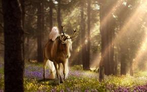 Картинка лес, цветы, природа, сова, лошадь, фэнтези, by ellipsiem