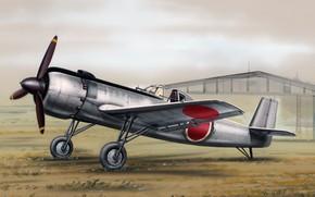 Картинка Nakajima, камикадзе, Ki-115, Цуруги, Tsurugi, бомбардировщик для камикадзе, японский специализированный самолёт, Ки-115