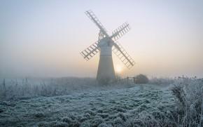 Картинка иней, трава, солнце, туман, рассвет, утро, мельница