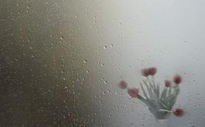 Картинка стекло, капли, цветы