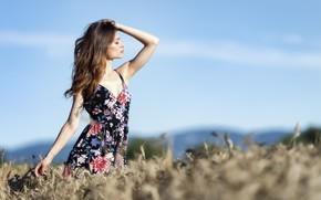 Картинка поле, небо, лицо, модель, платье, красавица, Erika