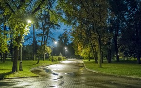 Обои Санкт-Петербург, осень, парк, вечер, огни