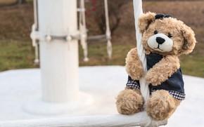 Картинка игрушка, медведь, girl, bear, teddy, одинокий, cute, lonely