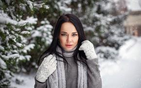 Обои snowflakes, bokeh, depth of field, lips, portrait, model, long hair, looking at camera, coniferous, beauty, ...