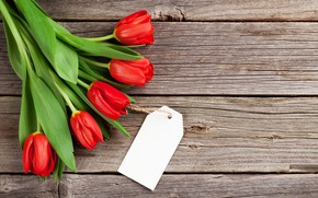 Картинка любовь, цветы, букет, тюльпаны, red, love, wood, flowers, romantic, tulips